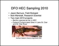 DFO Presentation